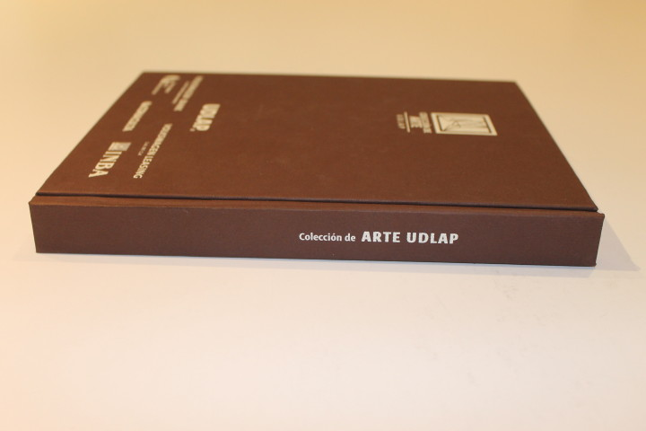 Catálogo de la Colección de Arte UDLAP- Nicias Sejas García - Mención Honorífica categoría Tapa- cubierta